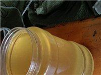 蜂蜜专卖,洋槐蜜30一斤,油菜密15一斤,送货上门