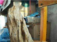 精美树化玉,具有很高的观赏价值,可以制作手链,项链,吊坠等。外表神似干树干,树皮。中心是玉。