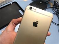苹果6sPlus iPhone6Plus 金色  大屏  指纹解锁超灵敏   九成新!可小刀,适合就...
