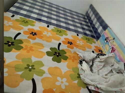 九成新一米五寬閑置床,總共有五張。上面的油膜都還在。
