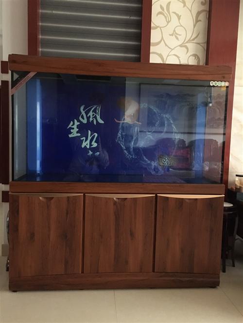 鱼缸,用了不到一年,9.9成新,处理价3000
