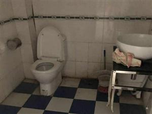 滨江小区3室 2厅 房东包物业费916元/月带车库