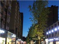 远达西城国际商业步行街(黄金地段)