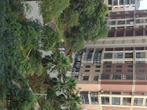 4房3阳台/品质环境小区/捡漏价格/边套