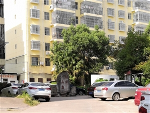福麒山庄,只要4500/平米,全城最实惠的小区房!