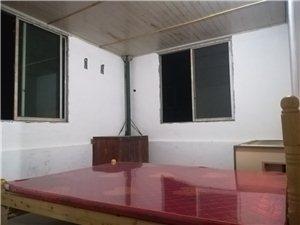 金鼎学校附近住房出租3室 1厅 1卫450元/月