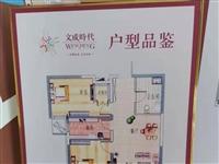 文成时代2室 1厅 1卫73万元