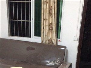 交警队附近2室 1厅 1卫800元/月