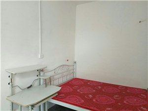 东站附近-一室一厅带卫生间厨房240元/月