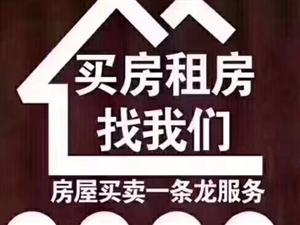 �矍俸���H�V��3室 2�d 2�l98.5�f元