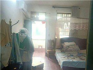 老干一期3室2厅1卫一口价19万