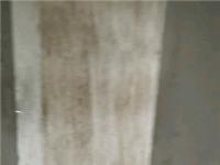 博森翰林城1室 1厅 1卫52平毛坯33.8万元