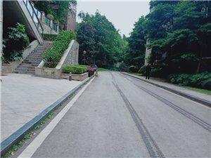 中城国际豪装套二88平室 69.5万元