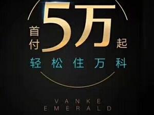 �f科,翡翠�I江2室 1�d 1�l45�f元