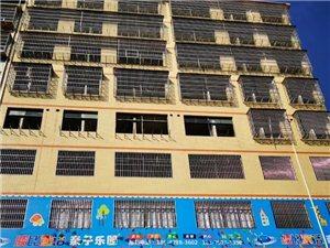 楂林工业园汇佳酒店旁4室2厅3卫45万元