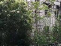 美丽泽京洋房,买一层关一层,还送送200平大花园