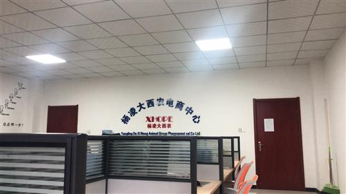 杨凌大西农动物药业集团有限公司