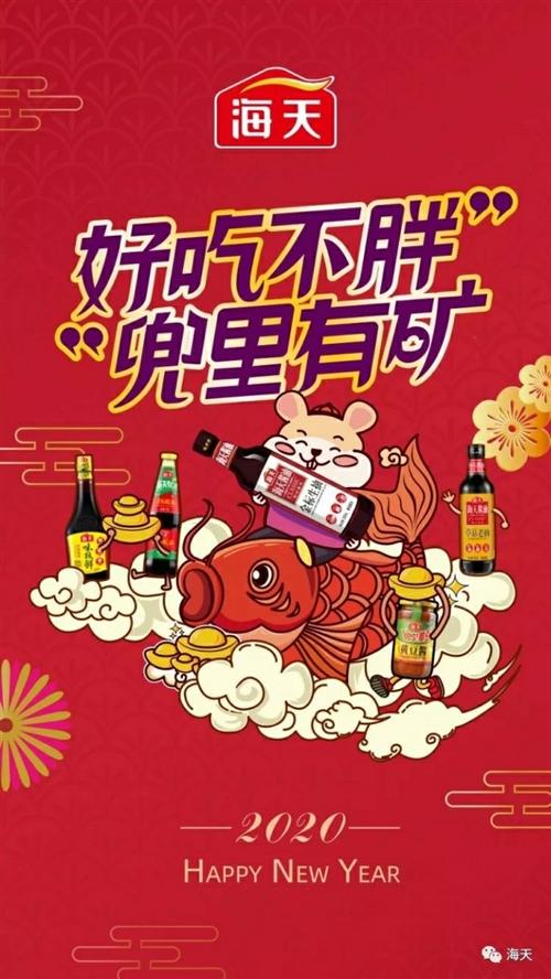 阳谷鹏飞味业有限公司