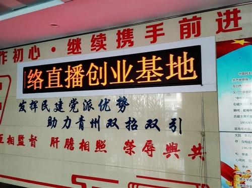 山东红鹦鹉文化传媒有限公司