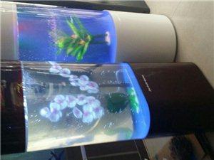 經營高中低檔魚缸器材魚藥魚糧