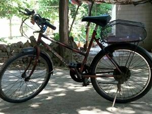 欧拜克自行车出售