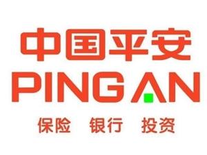 中国平安保险集团瑞金公司