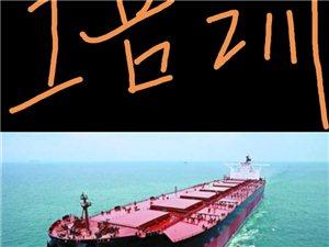 海员船员培训 水手机工招募