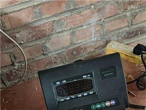 电子汽车衡   地磅    平台秤