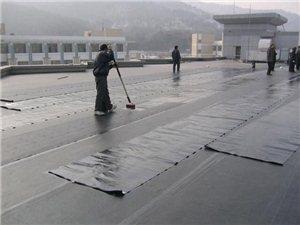 慈溪修屋頂漏水,修陽臺漏水,修廚房漏水,廠房漏水