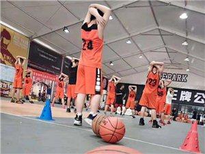 自如体育篮球培训