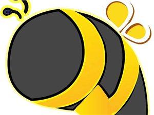 蜜蜂帮帮大事件(阜阳总代理转让)