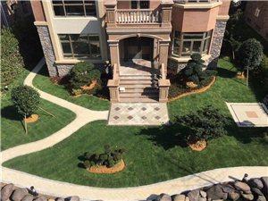 庭院景觀綠化工程專業服務