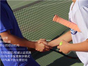 网球公开课/滨海校区