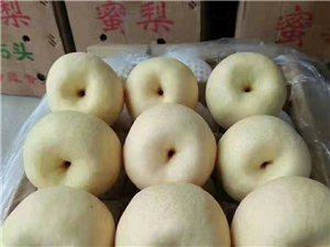 水晶苹果批发果园直销