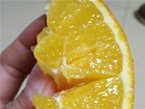 自家种的赣南脐橙