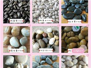 安仁园林铺路鹅卵石 彩色水洗石 黑白石子批发零售