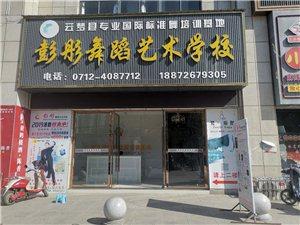 彭彤舞蹈藝術學校