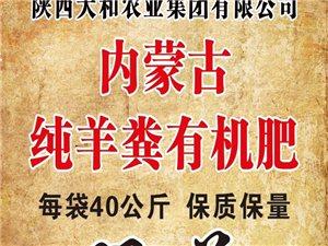 內蒙古發酵純羊糞有機肥