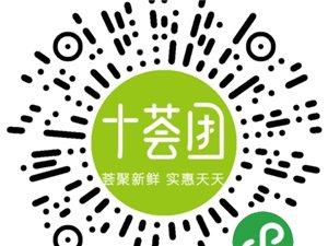 十荟团安仁县安平服务站招商