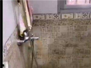 家用水管清洗服務