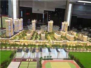 新浦中心高层洋房,CBD金融中心精装公寓
