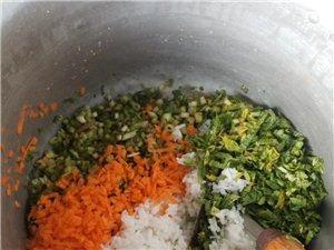 儋州那大绿色粮食饲养鹌鹑鸟