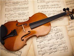 西安北郊鳳城五路有沒有學小提琴的?
