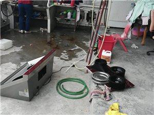 家电深度清洗保洁养护