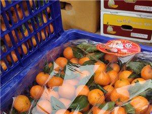 精品水果批发,年关福利礼盒开始接收预定