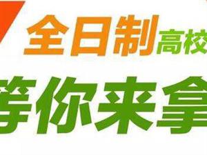 吉林省内公立大学全日制学历提升,同学们全日制