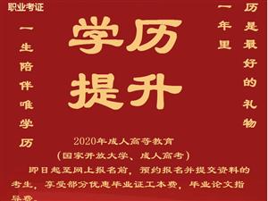 2020年成人高等教育(国家开放大学、成人高考)