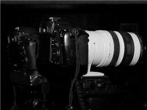视频剪辑 婚礼、活动、微电影