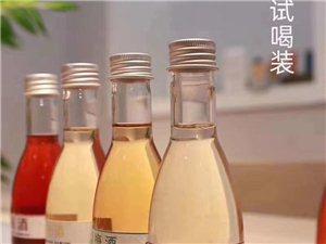 撫州阿甘酒業千古盛花果酒廠家批發招商