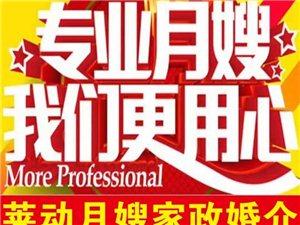 萊動月嫂家政服務中心是您最放心的選擇!